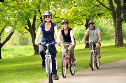 Hastings Wine Tour on Bikes